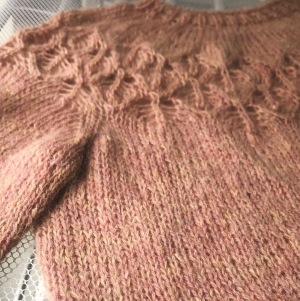 A close up of a pink, slightly fuzzy, lace jumper